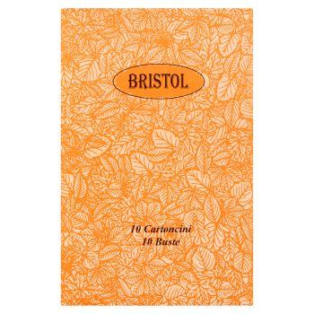Bristol Cartoncini bianchi con busta, 10 pezzi